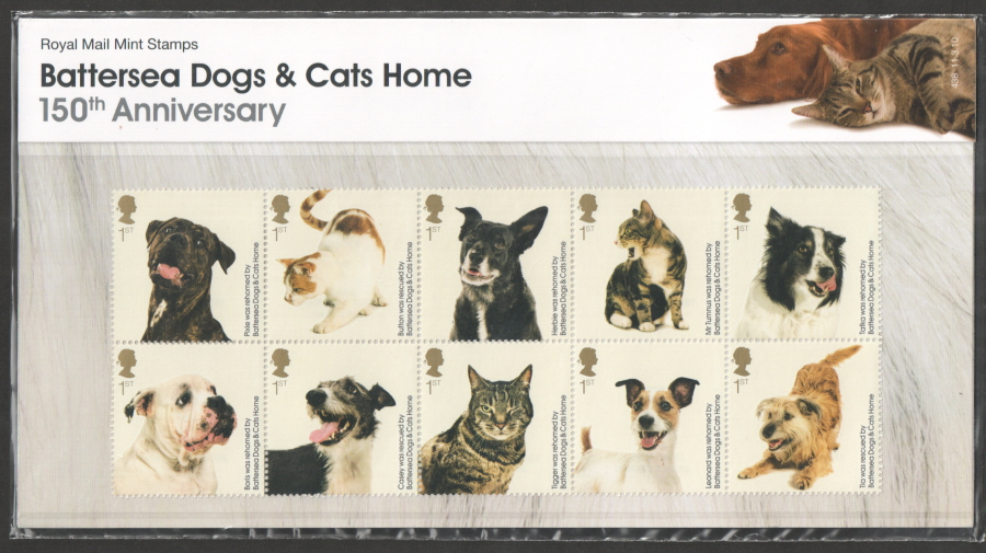 2010 Battersea Cats & Dogs Home Presentation Pack 438